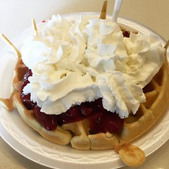 produce(0.0), cherry pie(0.0), pie(1.0), meal(1.0), breakfast(1.0), pavlova(1.0), belgian waffle(1.0), baked goods(1.0), whipped cream(1.0), food(1.0), dish(1.0), dairy product(1.0), dessert(1.0), cuisine(1.0), cream(1.0), sour cream(1.0), waffle(1.0),
