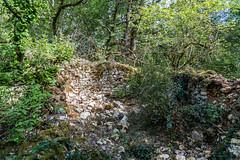 22-Ruines - Photo of Sarliac-sur-l'Isle