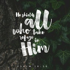 This God—his way is perfect; the word of the Lord proves true; he is a shield for all those who take refuge in him. Psalms 18:30 ESV