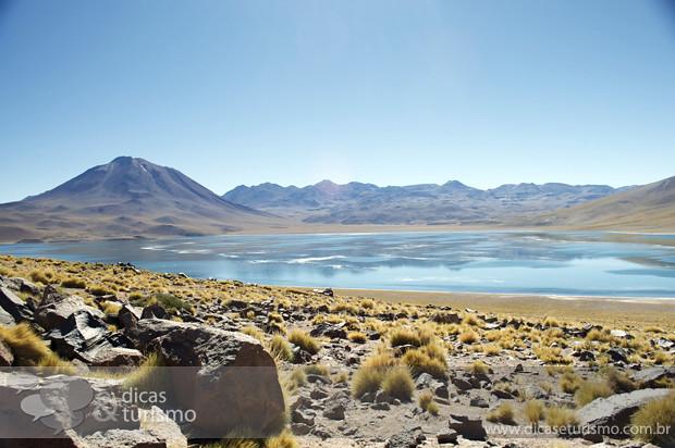 Lagunas Altiplanicas - Atacama 10