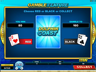 Dolphin Coast Gamble Feature