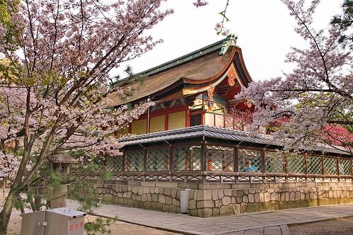 【写真】2013 桜 : 御香宮神社/2019-10-26/IMGP9740