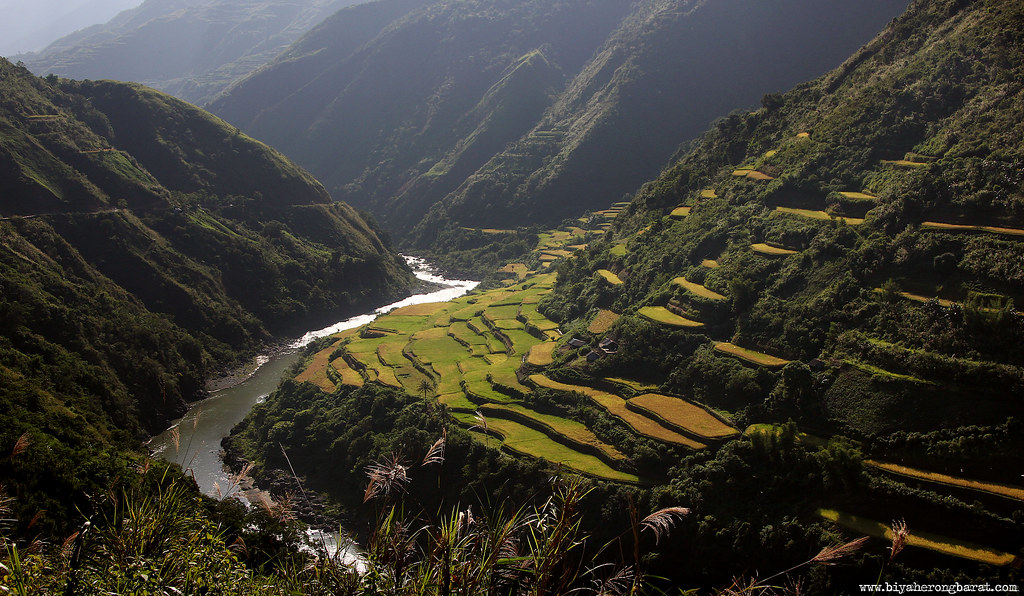 Rice Terraces in Tinglayan Kalinga