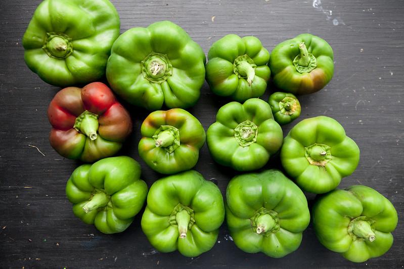 Weekly HarvestIMG_4129
