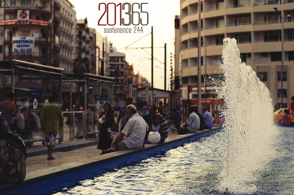 201365 • Sustenance 244