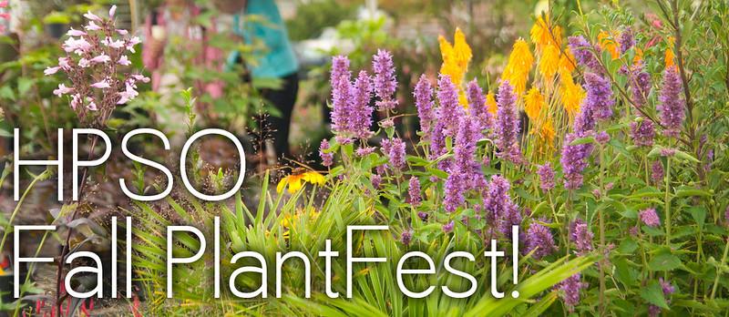 plantfest banner