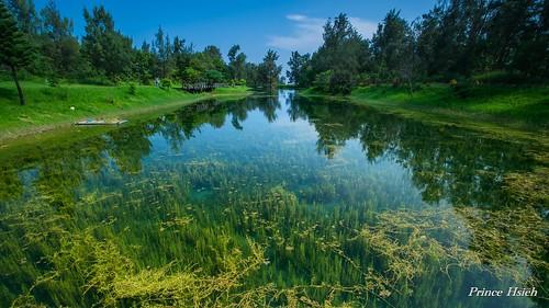 taiwan 台東 琵琶湖 taitungcounty pipalake sonya850 sony1635za