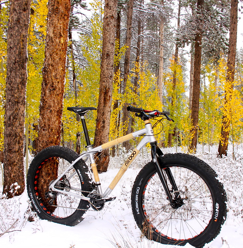 AluBooyah fat bike in the woods.