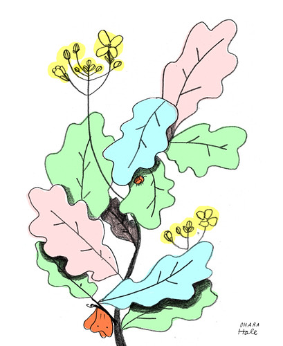 kale by Ohara.Hale