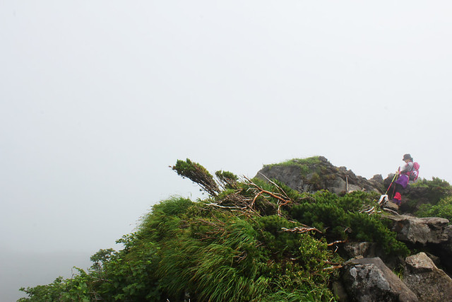 鳥海山_63