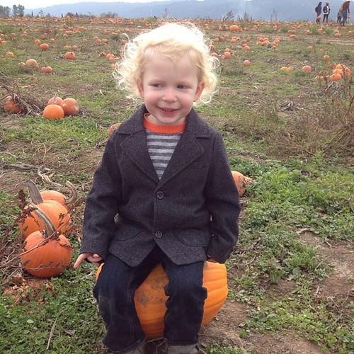 Pumpkinface.