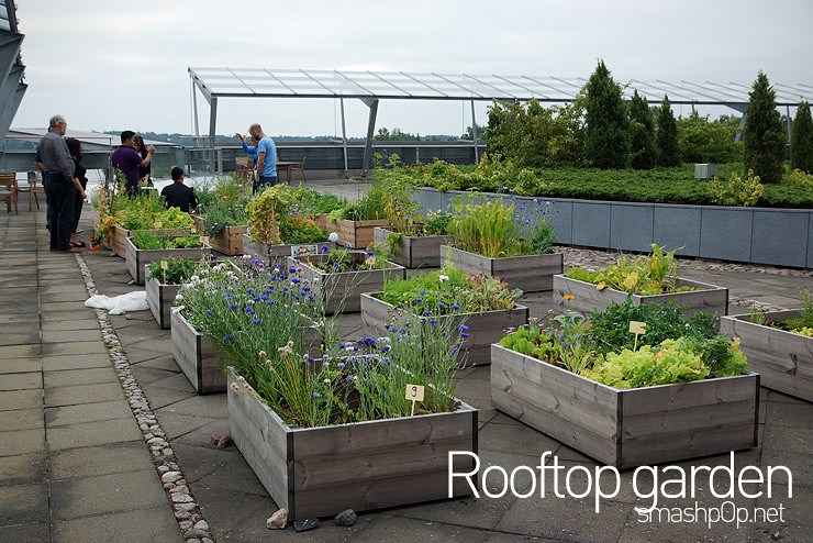 Like Literally.. Cos We Checked Out The High Tech Roof Top Garden With NFC  Technology N Stuff