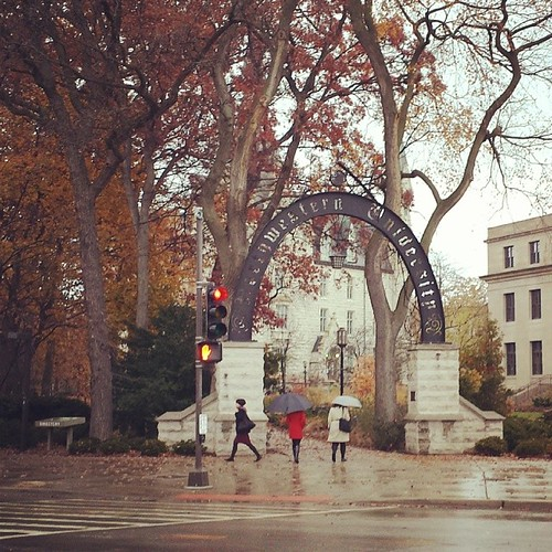 Northwestern University in a cold, windy, rainy day.