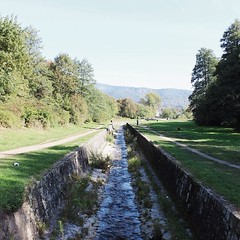 The most common place for our walks would be this one. It's close to the house and it stretches for a long time along a little stream (that is way greater in the spring as the snow melts) with a calming view of nearby mountains and forests....