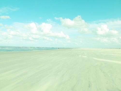 țărmuri vânturate la Marea Nordului