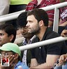 Rahul Gandhi at Wankhede stadium to watch Sachin's last innings 02 by pressbrief.in