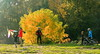 Family in Autumn Activities by johan.pipet