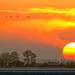 Fenland winter sunset by Nigel Blake, 10 MILLION...Yay! Many thanks!