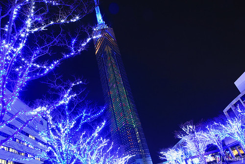 Momochi Blue Light X'mas 2013