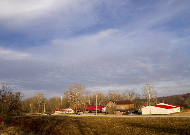 Szalay's Farm in Winter