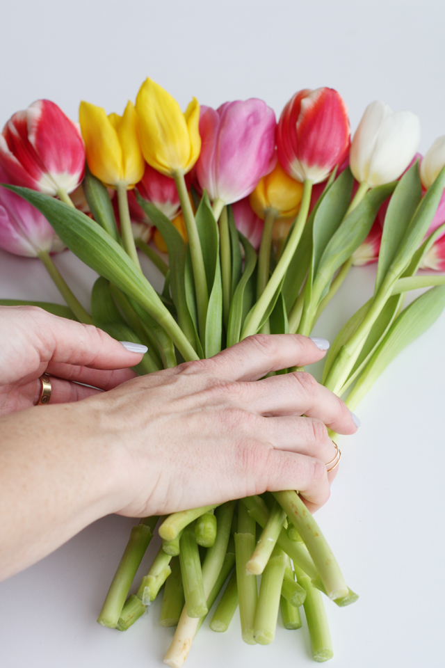 tulips grab together