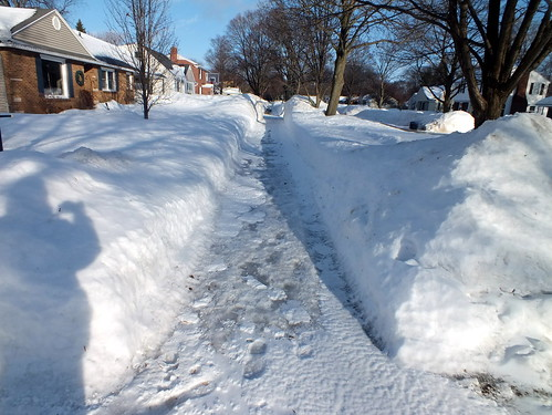 sidewalk in front of our house
