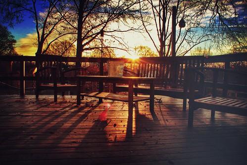 blue trees light sky sun tree sunrise geotagged rebel skies rise geotag app 2014 handyphoto iphoneedit snapseed jamiesmed