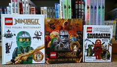 Ninjago Books With Minifigs