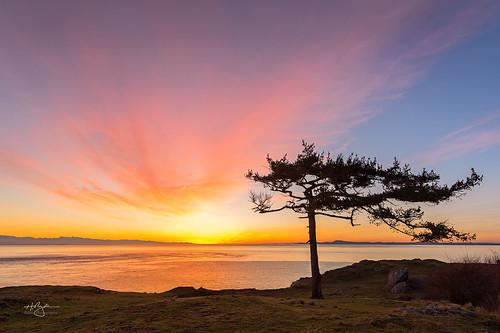 rosariohead sunset sunsetglow sunday ryderphotographic howardryder nikon nikkorafs1424mmf28ged leefilters nik lrcc pscc washingtonstate upperleftusa roadtrip islandcounty