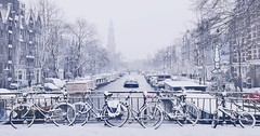 Exhilarating winter carpet in the heart of Amsterdam