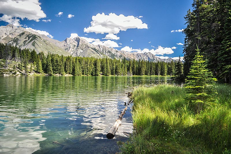 Kootenay National Park, Rocky Mountains, BC Rockies, British Columbia.