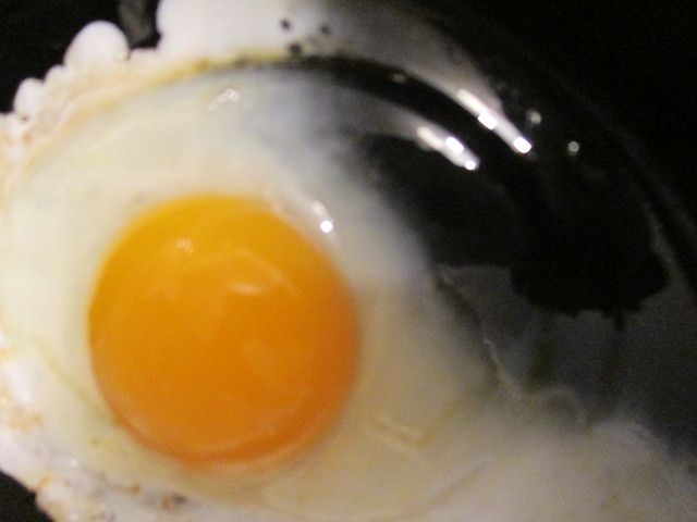 Egg, Canon POWERSHOT ELPH 115 IS