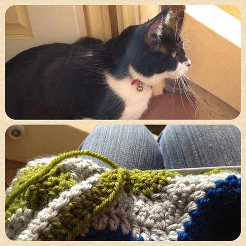Crochet and cats on the front steps on a Saturday afternoon