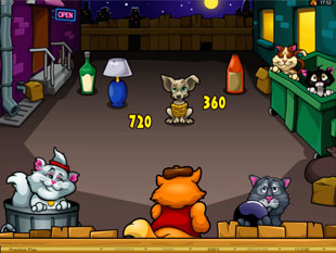 Alley Cats Bonus Game