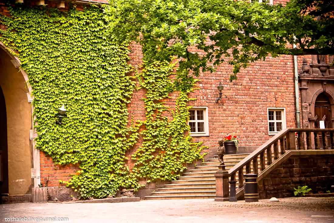 Stockholm_City_Hall-42