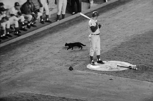 baseball superstitious