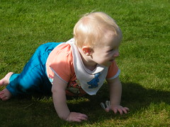child, infant, crawling, fun, grass, green, lawn, person, boy, toddler,