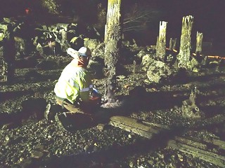 Cutting down old pilings