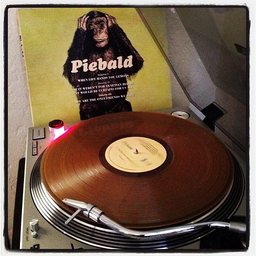 #piebald #vinylparty #nowspinning #vinyligclub #photographicplaylist #todaysoundslikethis  #recordstoreday @srcvinyl by Big Gay Dragon