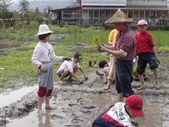 慈心中小學學生必須到田裡實踐農耕,7年級還要學堆肥。(圖片來源:慈心中小學部落格)