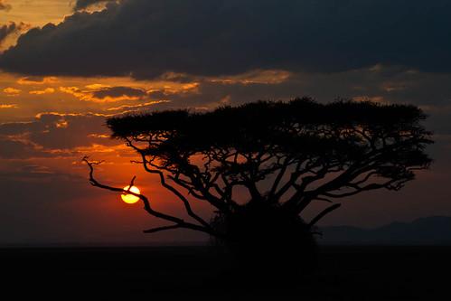 evening event exhibition facebooknationalphotomonth2011 naturalphenomenon sunset time timeofday riftvalley kenya