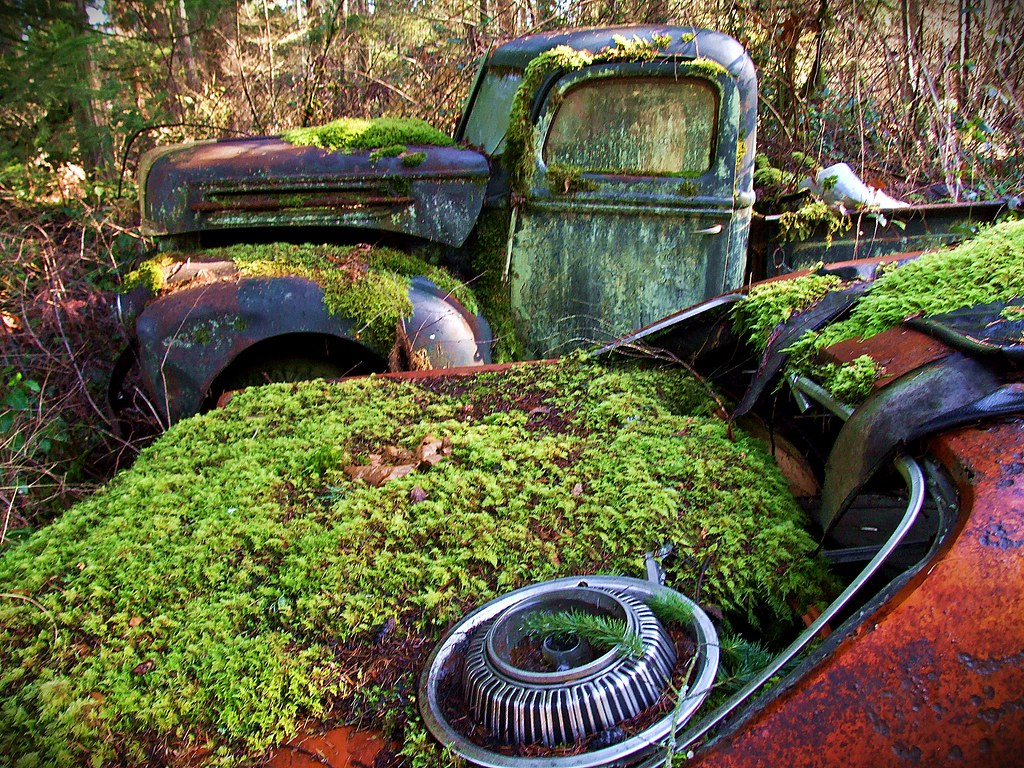 Ford Pickup - Trust Salvage - Auburn WA