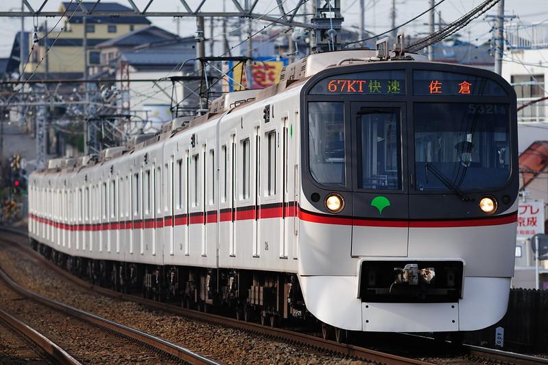 867KTa 5321 Rapid Sakura