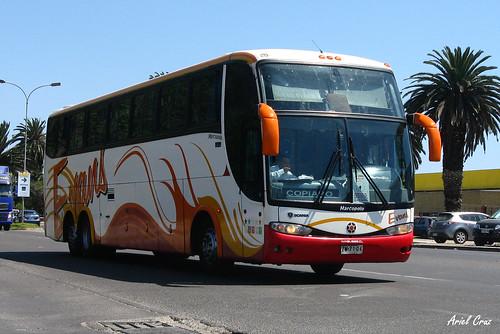 Buses Evans en La Serena | Marcopolo Paradiso 1200 / ZW7104