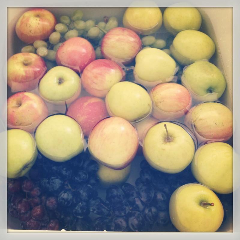 Fruit/Veg Wash