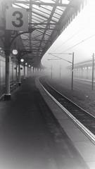 Misty York Monday Morning