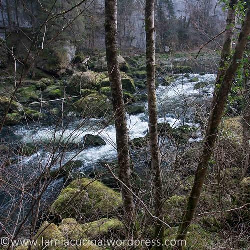 Doubs (1) Biaufond 2014 03 12_3467