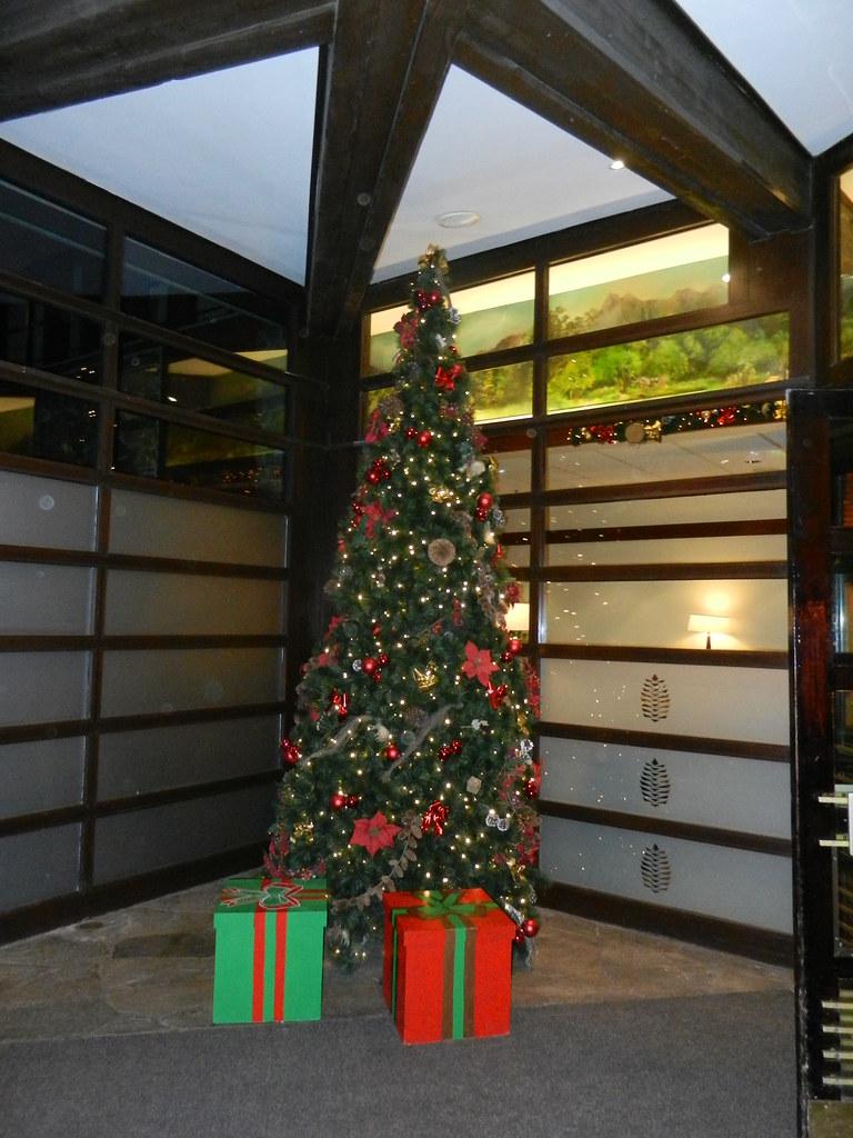Un séjour pour la Noël à Disneyland et au Royaume d'Arendelle.... - Page 2 13643432103_3a8472c700_b