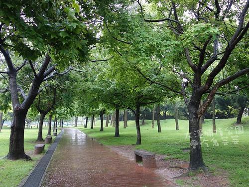 大溪埔頂公園_016.jpg