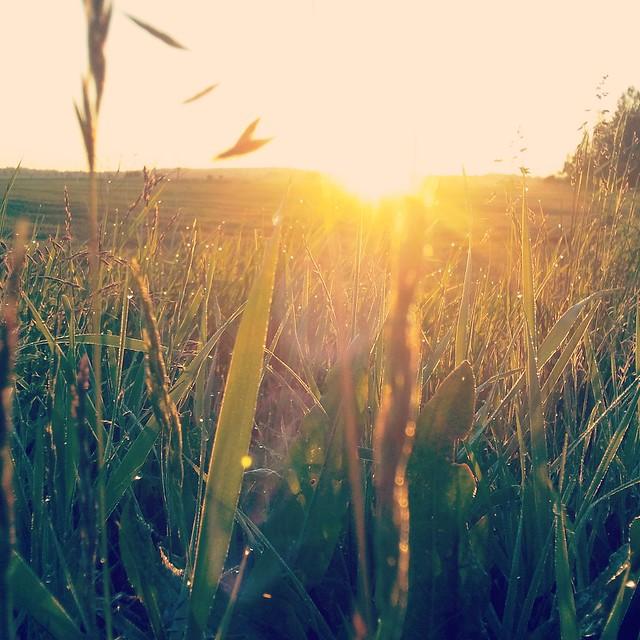 [060] Rising Sun